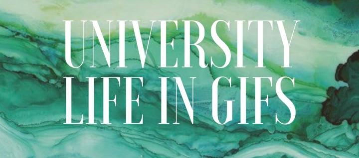 University Life … InGIFs
